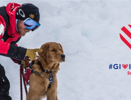Are you grateful for your patrol? For ski patrolling? Remember NSP on #GivingTuesday!