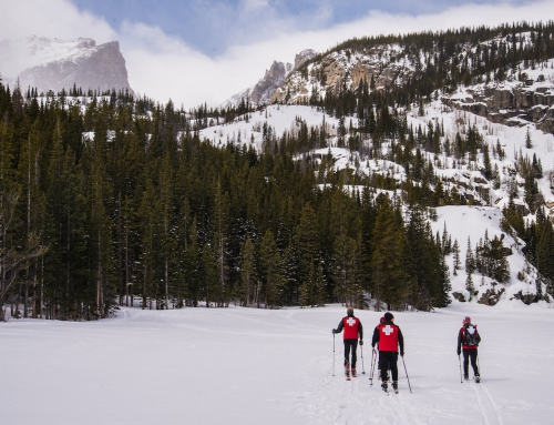 Avalanche Beacon Precautions